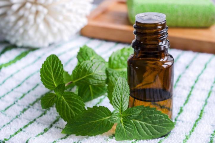 óleo essencial de hortelã pimenta na massagem