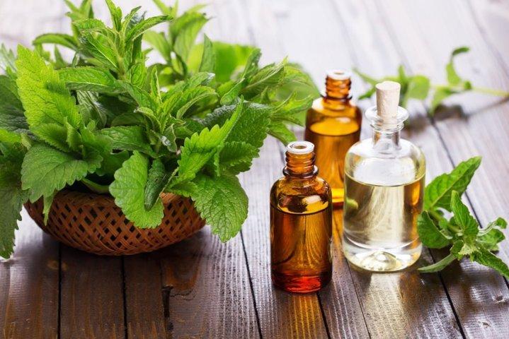 óleo essencial de hortelã pimenta